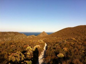 Pringle Bay path and handklip in distance