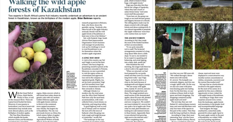 Walking the Wild Apple Forests of Kazakstan