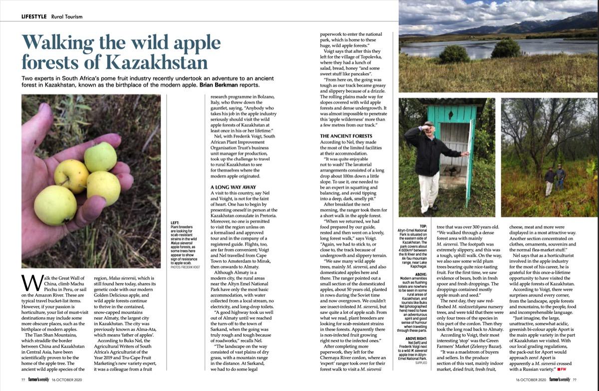 Walking the Wild Apple Forests of Kazakstan